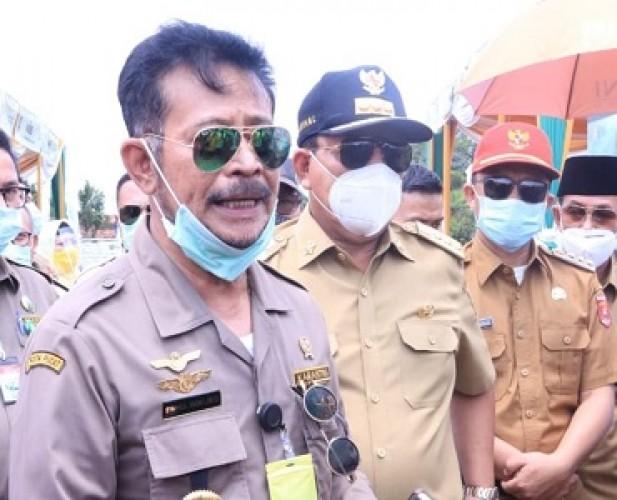 Produksi Padi Lampung Tahun ini Naik 20%