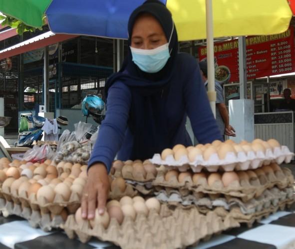 Produksi Telur di Lampung Melimpah tetapi Sepi Pembeli