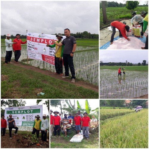 PT Mega Eltra Perluas Pemasaran di Lampung