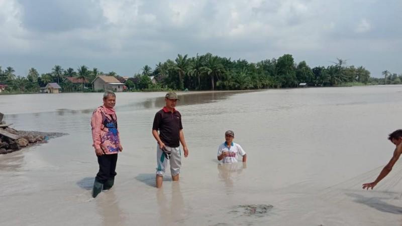 Puluhan Ha Sawah di Dua Desa di Palas Terendam Banjir