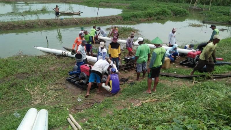 Puluhan Hektare Lahan Sawah di Pulautengah Terlambat Tanam
