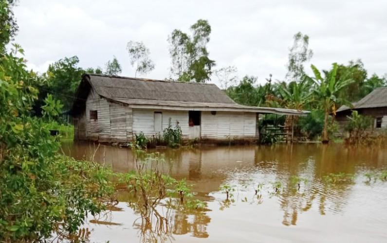 Puluhan Rumah di Rawapitu Terendam Banjir