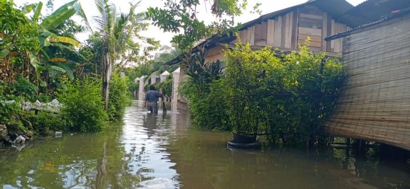 Puluhan Rumah Terendam Banjir Usai Diguyur Hujan Deras