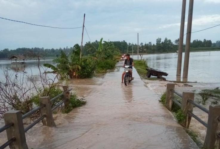 Ribuan Ha Tanaman Padi di Palas Terendam Banjir