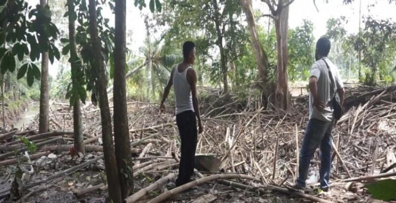 Sampah di Sungai Way Pisang Dikhawatirkan Timbulkan Banjir