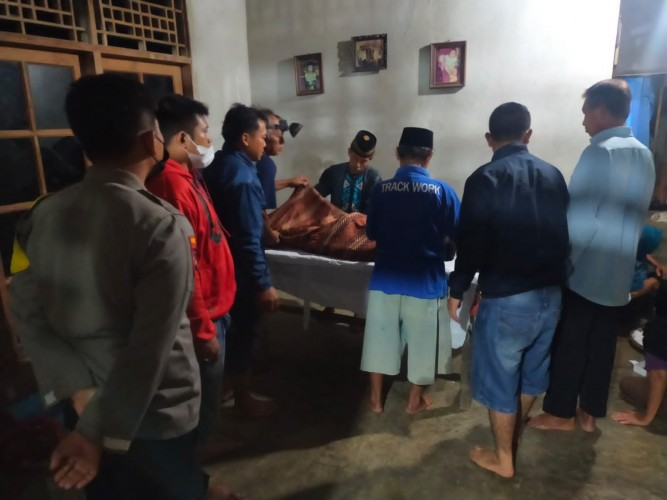 Sedang  Mencari Ikan di Sawah, Buruh Tani Tewas Digigit Ular