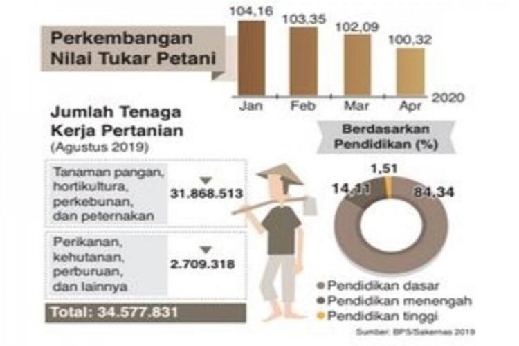 Sektor Pertanian Penopang Pertumbuhan Ekonomi Pascapandemi
