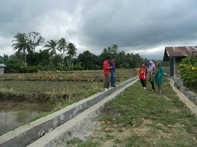 Semangat Bangun Desa, Pekon Terbaya Laksanakan 6 Item Kegiatan Fisik