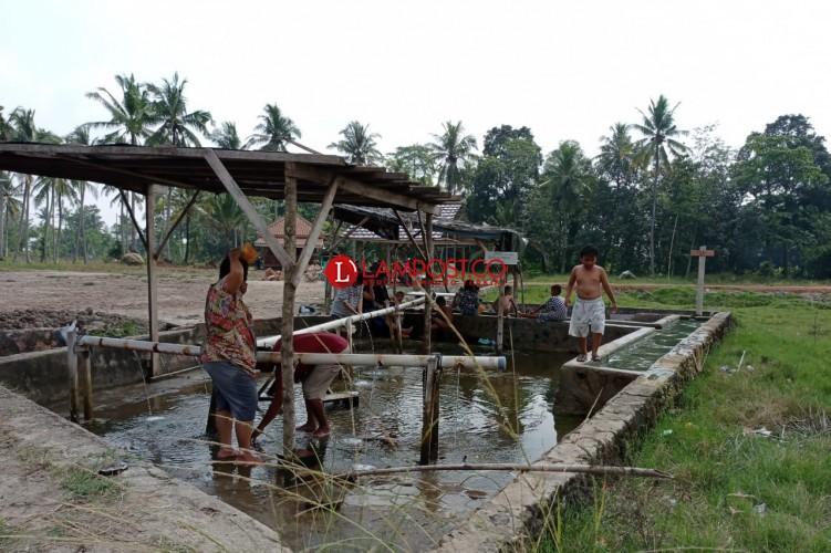 Semburan Air Panas di Cisarwa Natar Ramai Dikunjungi Warga