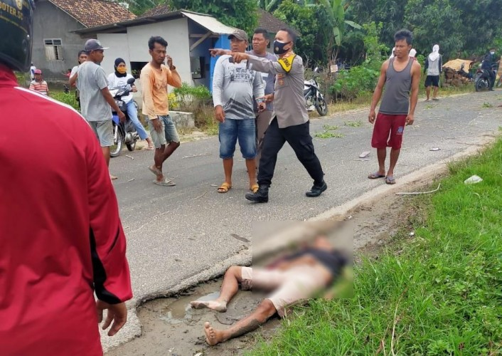 Seorang Pengendara di Candipuro Tewas Tertimpa Pohon Tumbang