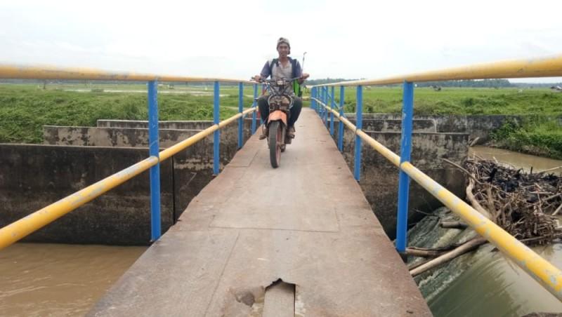 Setahun Diperbaiki, Jembatan Pertanian Palaspasemah Kembali Rusak