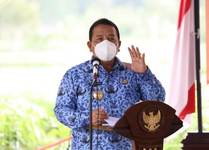 Sinergi Semua Pihak Bangkitkan Peternakan Lampung