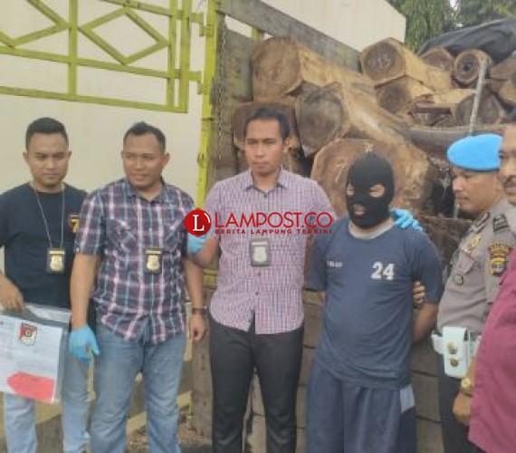 Sopir Pengangkut Kayu Sonokeling Ditetapkan Jadi Tersangka