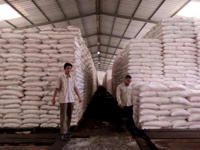 Stok Pupuk Urea Subsididi Pringsewu Tersedia 5.200 Ton