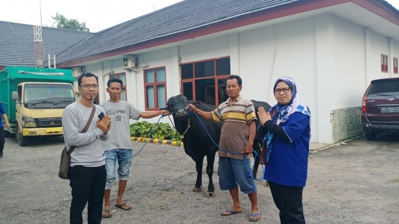 Sudin Serahkan Sapi Kurban ke Kantor Lampung Post