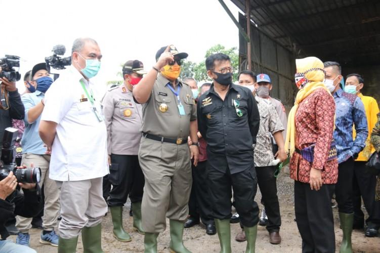 Syahrul Limpo Sentuh Pembibitan dan Penggemukan Sapi di Metro