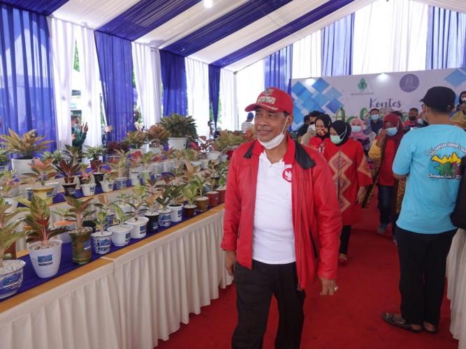 Tanaman Hias Aglaonema Cocok Dijadikan Andalan Agribisnis di Lamteng