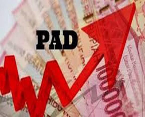 Target PAD Pemkab Lamtim 2020Naik Rp17 Miliar
