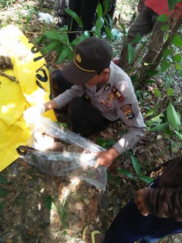 Temuan Tengkorak di Pinggir Rawa, Diduga Warga yang Hilang Dua Bulan Lalu