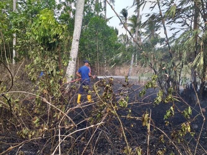 Terjadi Lagi, Kebakaran Landa Dua Lahan di Lamsel