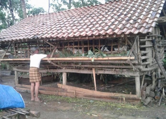 Ternak Kambing Bisnis Menjanjikan di Desa
