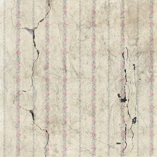 Tiga Gempa Susulan Terjadi Usai Gempa Liwa-Pesisir Barat