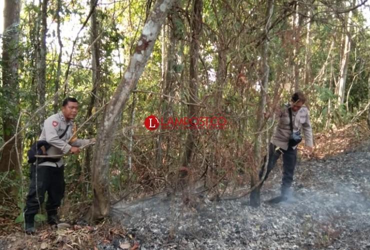 Tim Gabungan Padamkan Kebakaran di Kawasan TNBBS