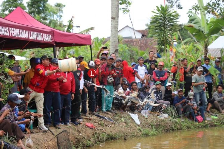 Tingkatkan Konsumsi Ikan, Pemkab Lambar Gelar Gemar Ikan