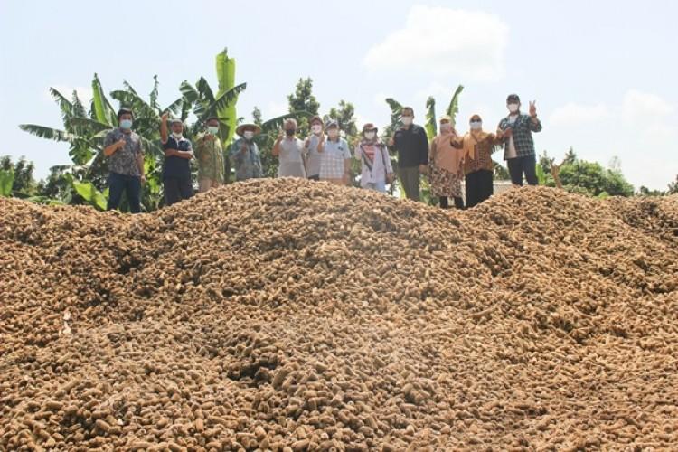 Unila Kembangkan Biochar dari Limbah Biomassa Jagung