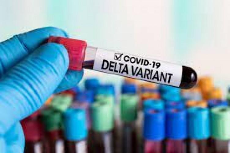 Varian Delta Dinilai Turunkan Kemanjuran Vaksin Covid-19