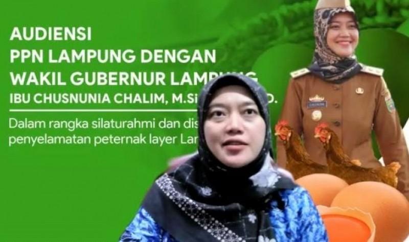 Wagub Lampung Dorong Semua Pihak Kampanye Makan Telur