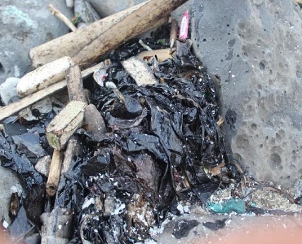 Walhi bakal Bawa Dugaan Pencemaraan Laut di Lamtim ke Jalur Hukum