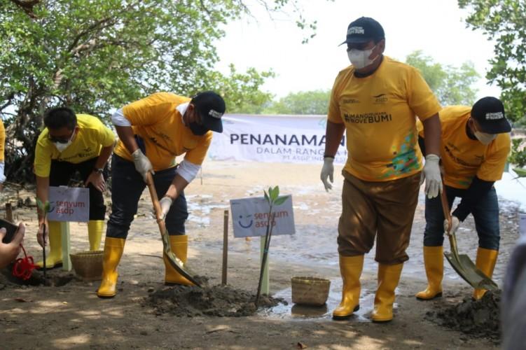 Wamen BUMN dan Gubernur Tanam Mangrove di Bakauheni