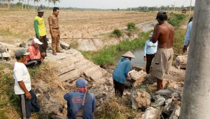 Warga Berswadaya Bangun Jembatan untuk Perlancar Distribusi Panen