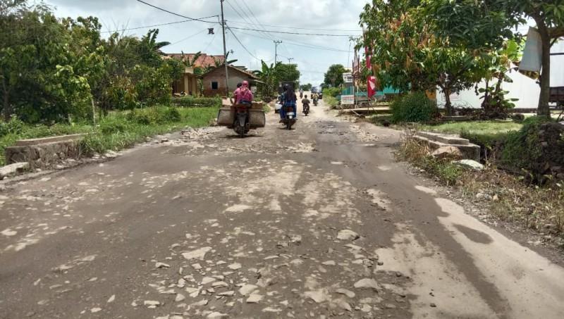 Warga Desak Pemkab Lamsel Perbaiki Ruas Jalan Sidomulyo-Way Panji