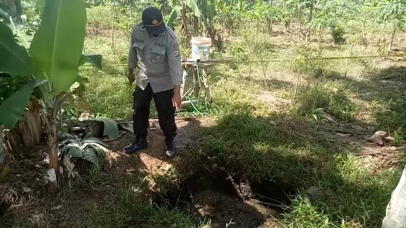 Warga Digegerkan Penemuan Mayat di Pekon Tiuh Memon Tanggamus