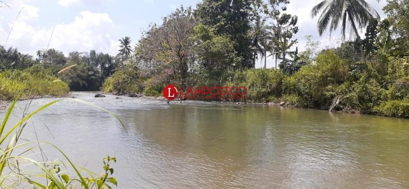 Warga Harapkan Perbaikan Jembatan Gantung Abung Tinggi
