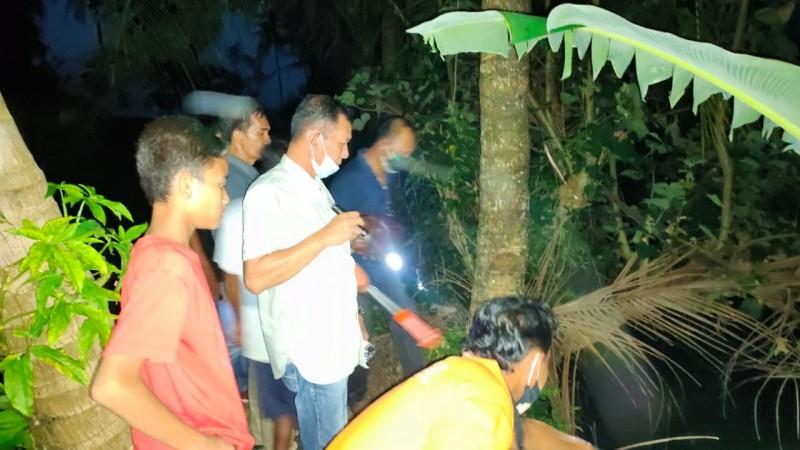 Warga Pagelaran Ditemukan Tewas Terjatuh dari Pohon Kelapa