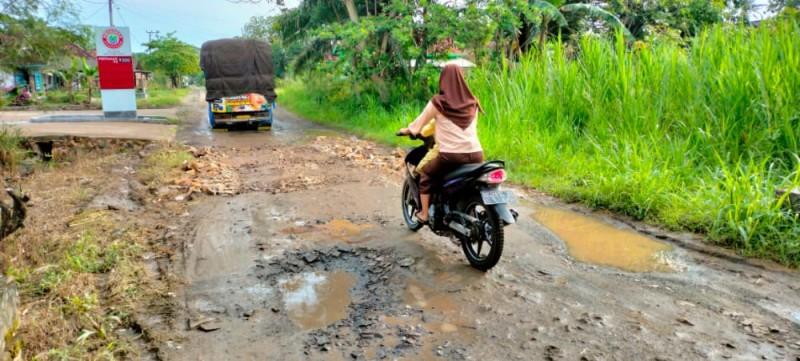 Warga Palas Harapkan Perbaikan Jalan Bumidaya-Pulaujaya
