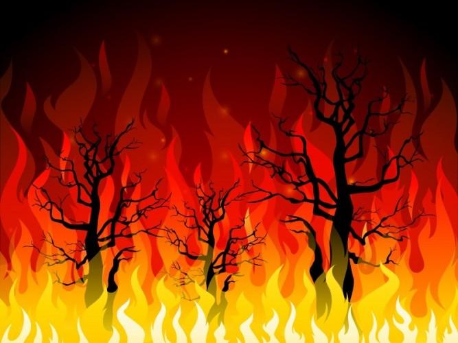 Warga Panaragan Merugi Rp700 Juta akibat Lahan Karet Terbakar