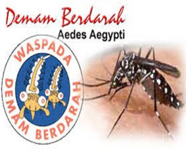 Warga Perlu Waspadai DBD dan Malaria di Musim Hujan