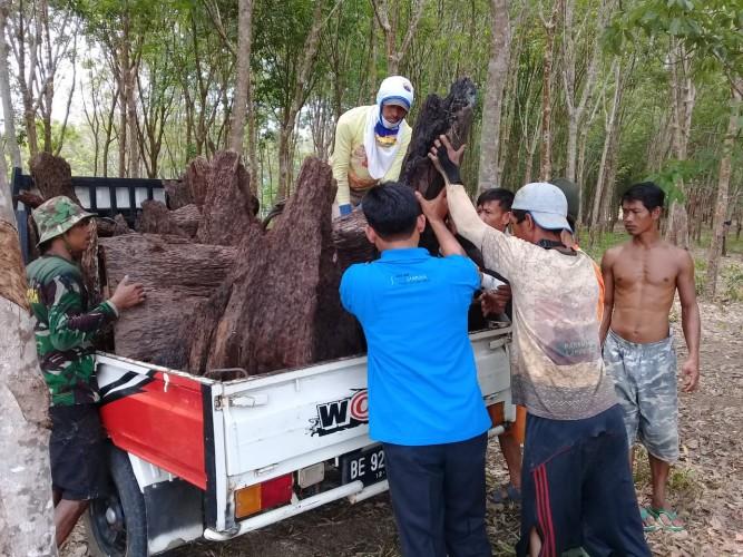 Warga Sawojajar Olah Bonggol Kayu Jadi Karya Seni