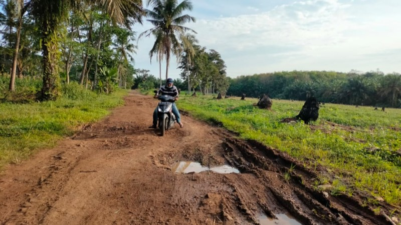 Warga Sidomulyo Harapkan Perbaikan Jalan Penghubung Dua Desa