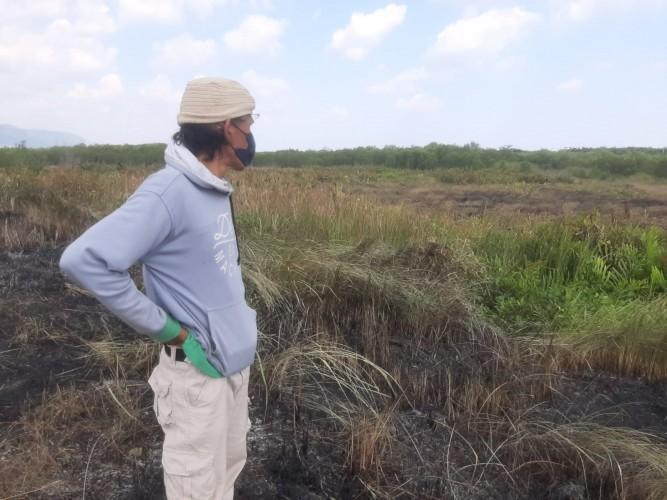 Warga Telukbetung Selatan Selamatkan Hutan Mangrove dari Kebakaran
