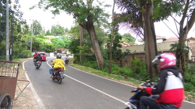 Waspadai Pohon Besar Berpotensi Roboh di Jalan Sam Ratulangi