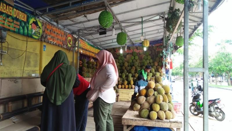 Wisata Durian Jadi Destinasi Baru di Lampung