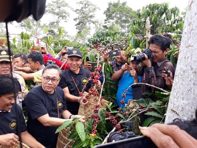 Zulkifli Hasan Ikut Panen Raya Kopi Robusta dalam Ajang Festival Kopi di Lampung Barat